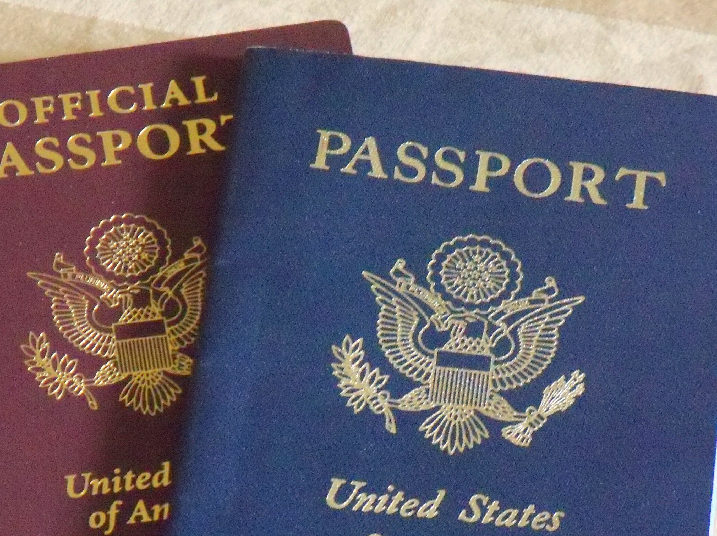 Passport For Travel To Odifferent States