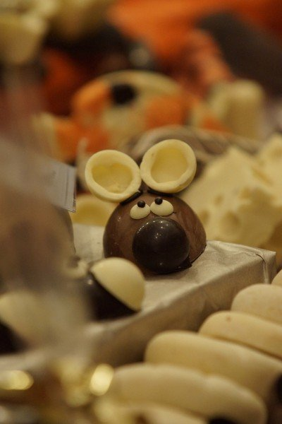 'chocolArt': Tübingen's feast for chocoholics