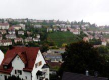 View from Killesberg, Stuttgart area. Photo by Holly DeCarlo-White