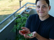 Balcony gardening grows popular during COVID